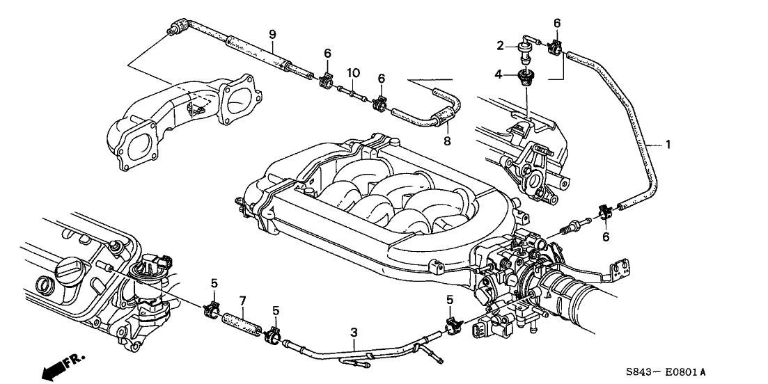 1999 honda accord 2 door lx (v6) kl 4at breather tube (v6)